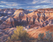 painted desert late afternoon